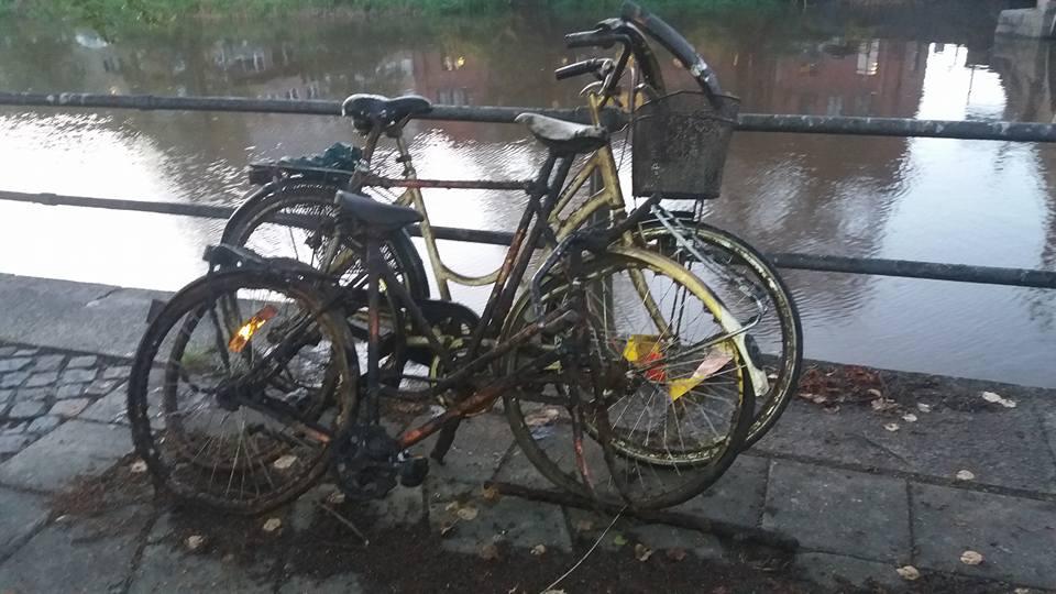 Parádní cyklistické úlovky