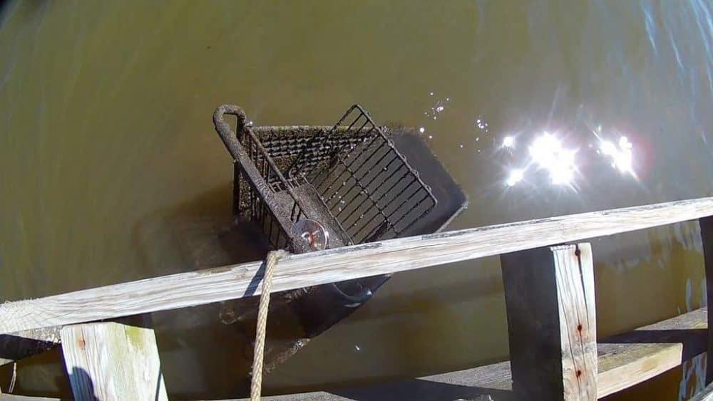 magnet fishing shopping cart