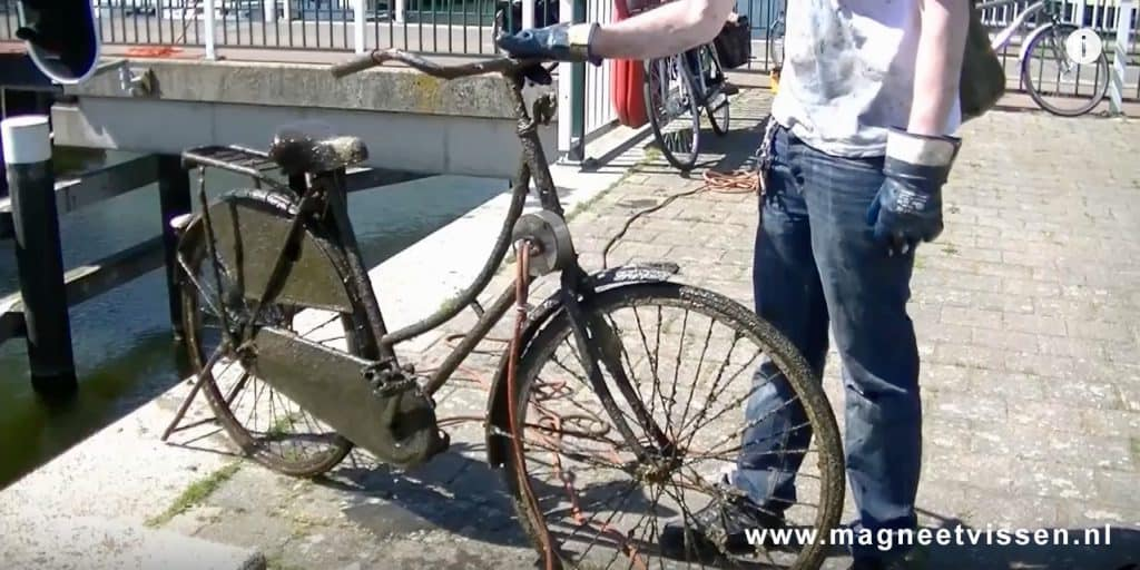 Úlovek kola z Holandska