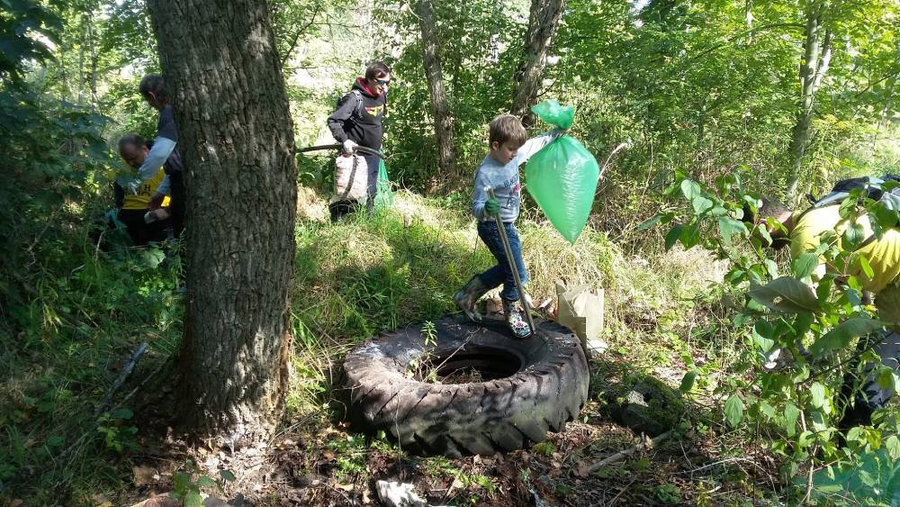 čistí lesy, řeky, parky